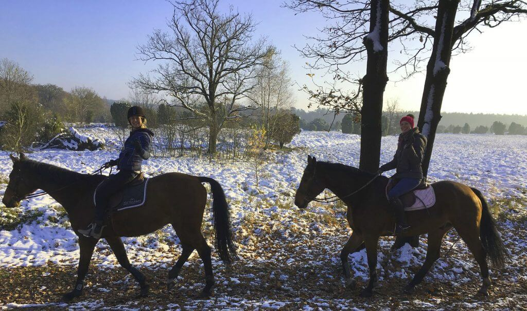 "Safely trail riding through the beautiful landscape of the nature parc ""Lüneburger Heide"""